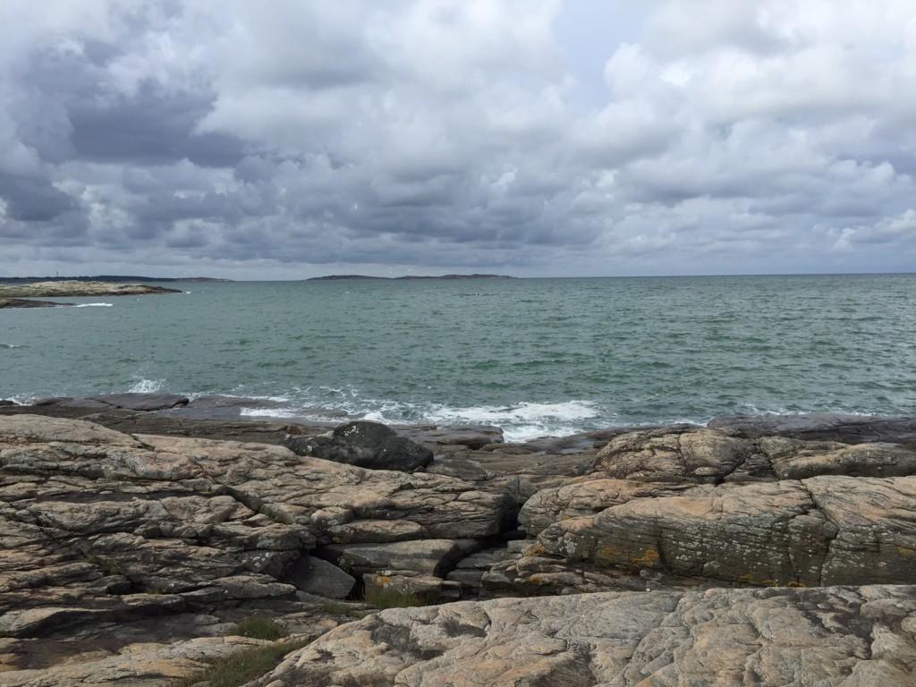 Vilda havet